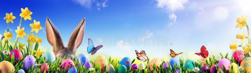 复活节-兔宝宝和装饰的鸡蛋 库存照片