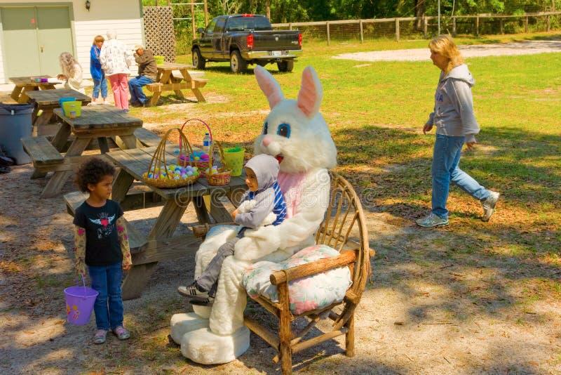 复活节兔子参观ocala 图库摄影