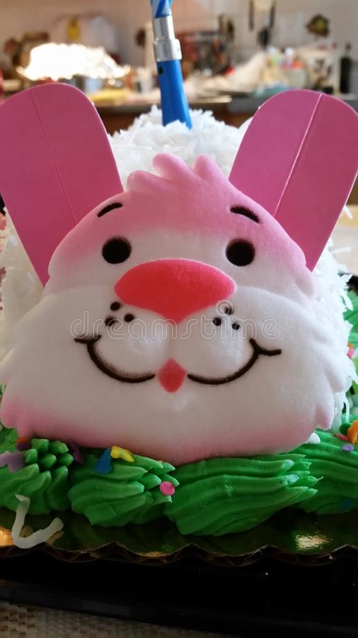 复活节兔子面孔 免版税库存图片