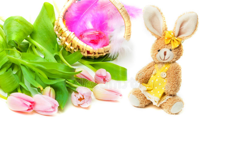 复活节兔子,郁金香,复活节篮子 免版税库存照片