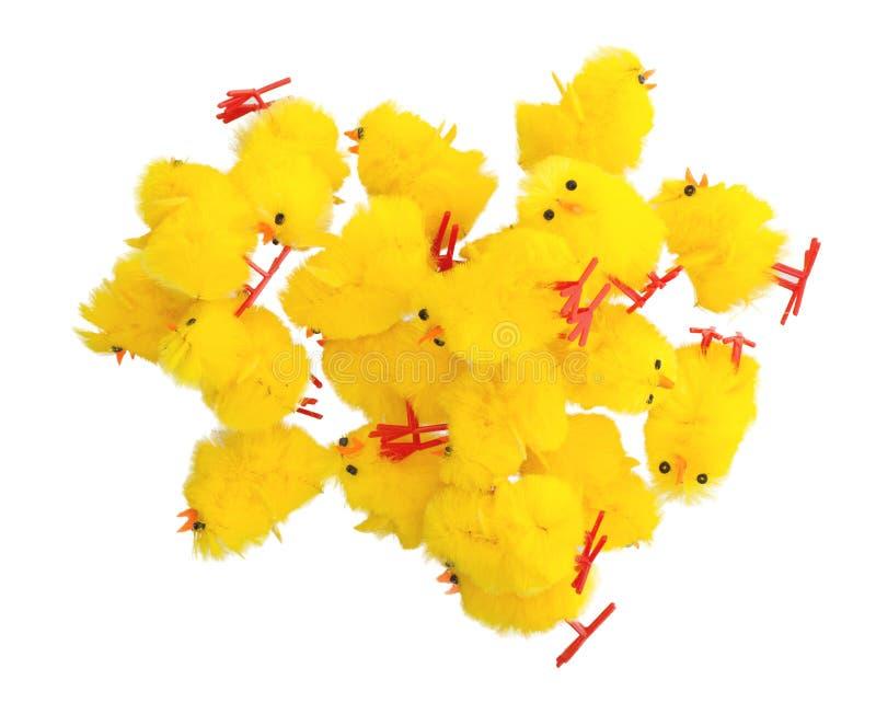 复活节小鸡丰盈,顶视图 免版税库存图片