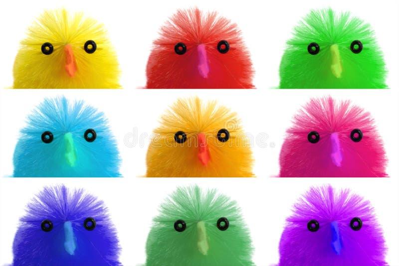 复活节小鸡的汇集,特写镜头 免版税库存图片