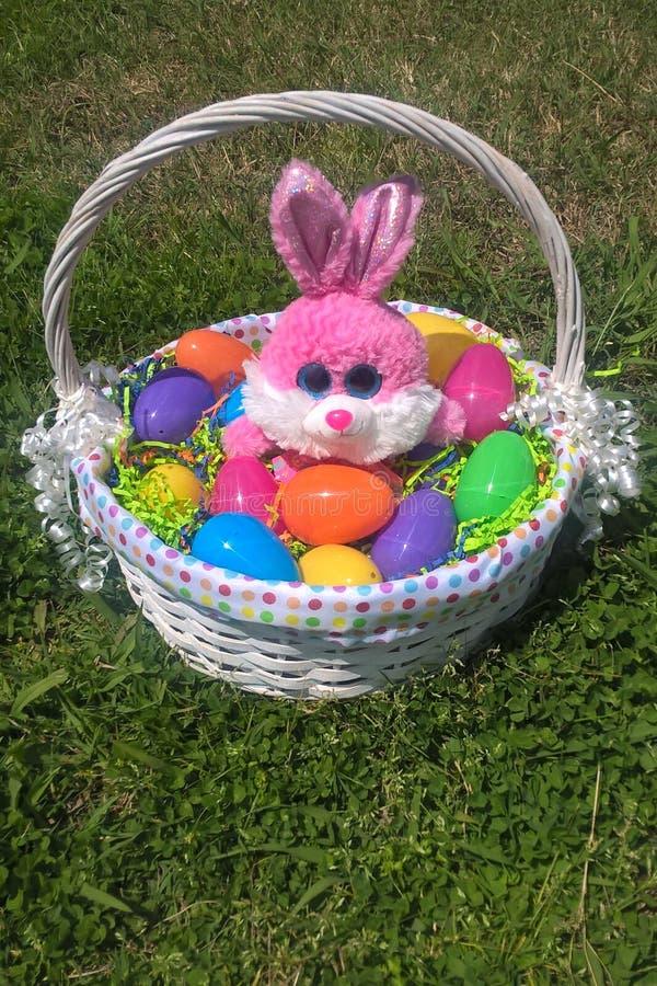 复活节篮子和兔宝宝 免版税图库摄影