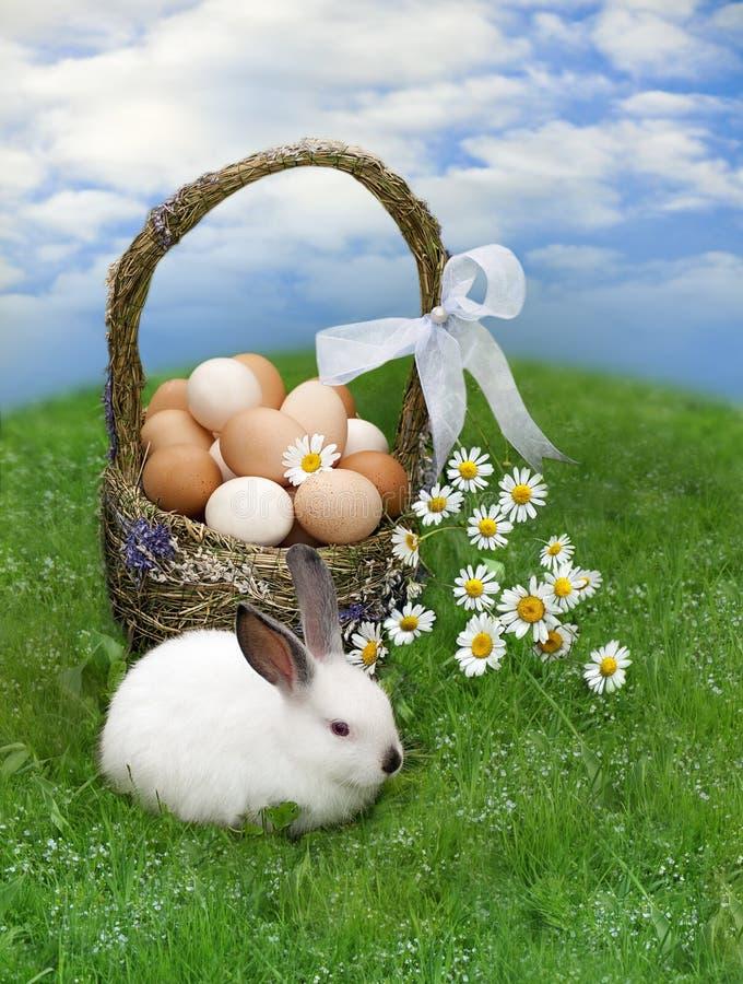 复活节篮子和复活节兔子 库存图片