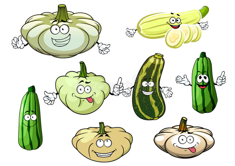 夏南瓜、骨髓和南瓜菜 库存例证