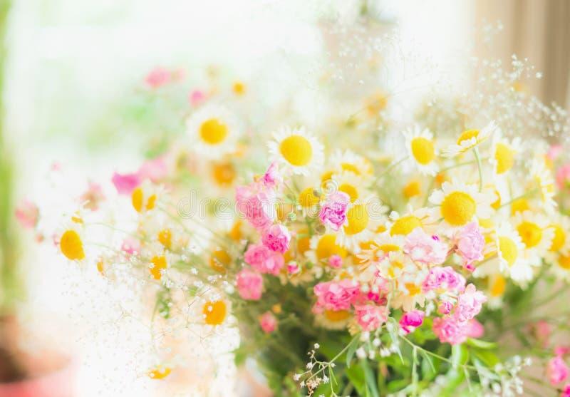 夏天与小的桃红色玫瑰的雏菊束在窗口 库存照片