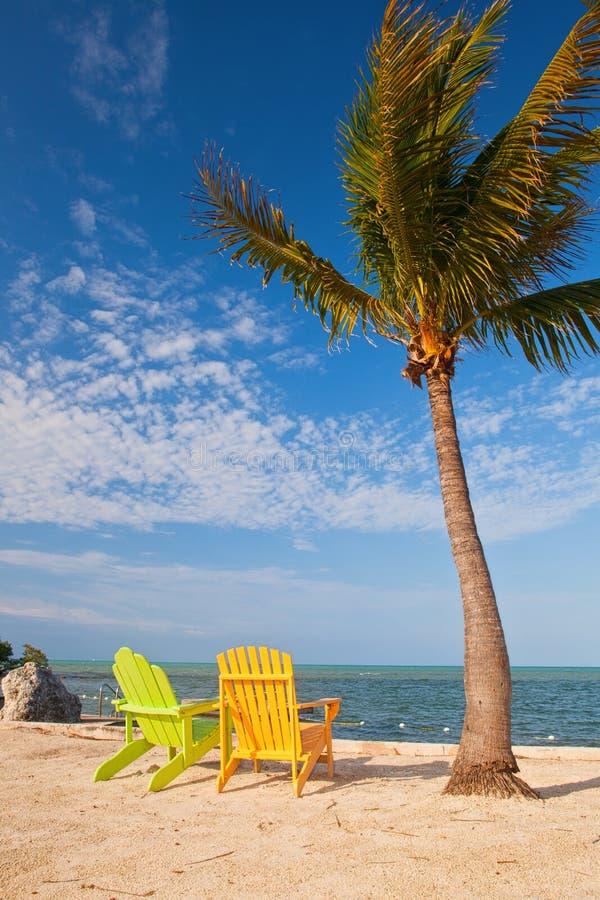 夏天与棕榈树和躺椅的海滩场面 免版税库存图片