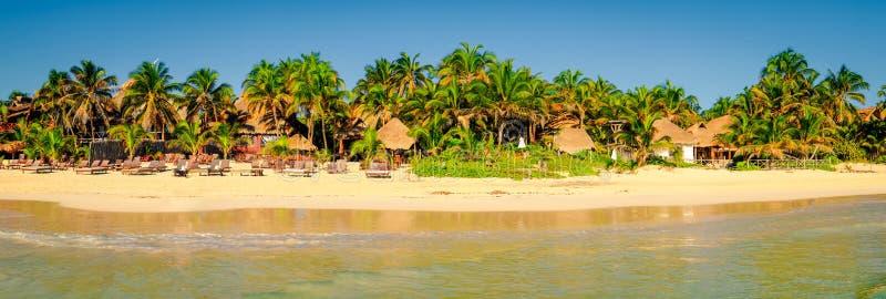 夏天与棕榈树的海滩风景,墨西哥田园诗平静的看法  免版税图库摄影