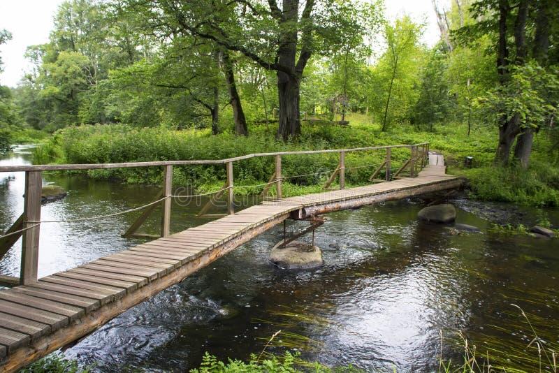 夏天与他的森林风景木桥 免版税库存照片