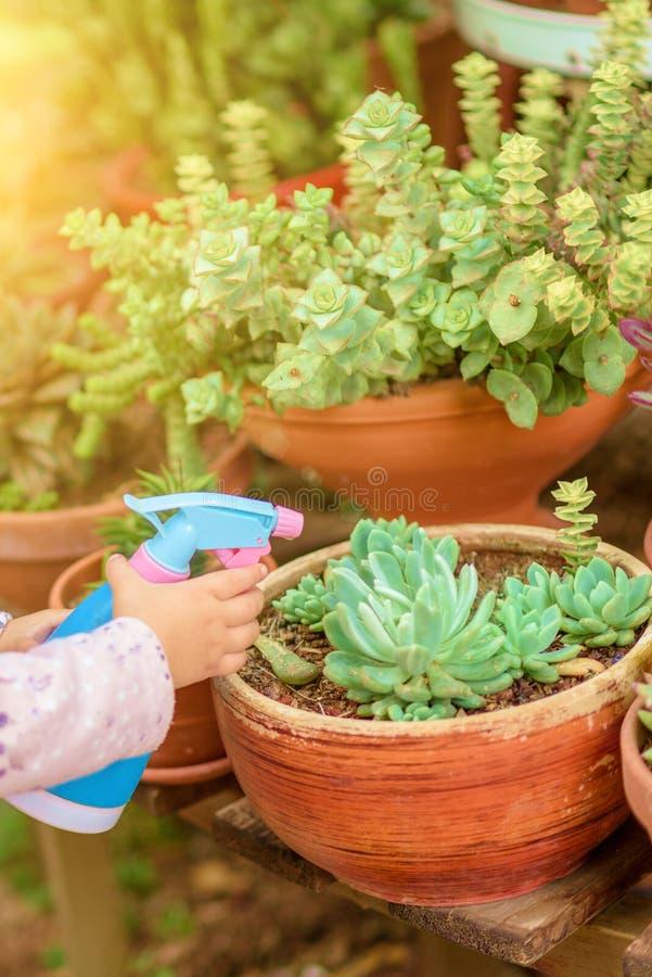 夏天乐趣:一点美女浇灌的庭院 免版税图库摄影