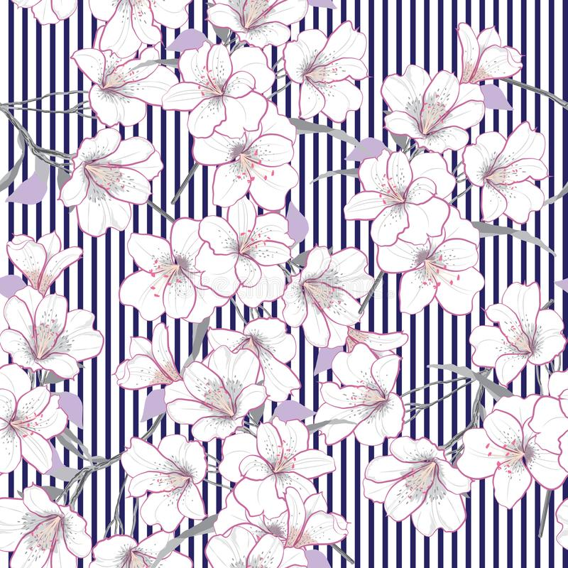 夏天传染媒介庭院花卉无缝的样式 白花patte 皇族释放例证