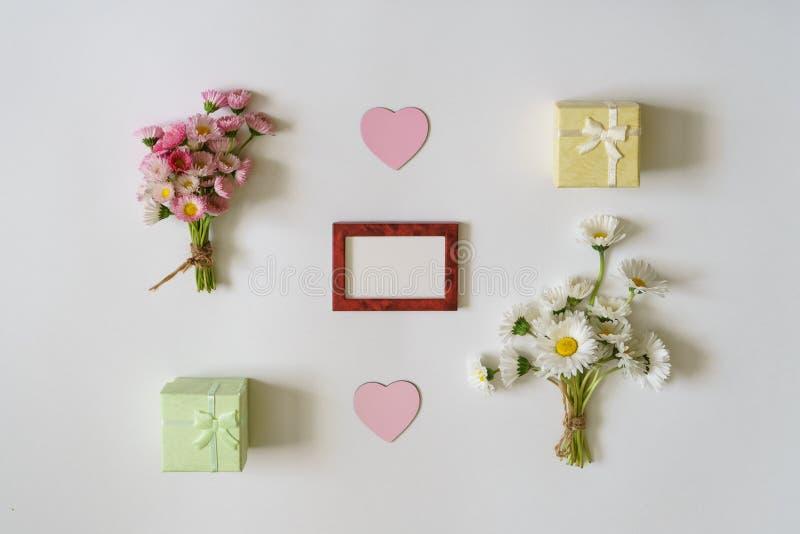 夏天创造性的构成 两白色和桃红色延命菊雏菊 库存照片