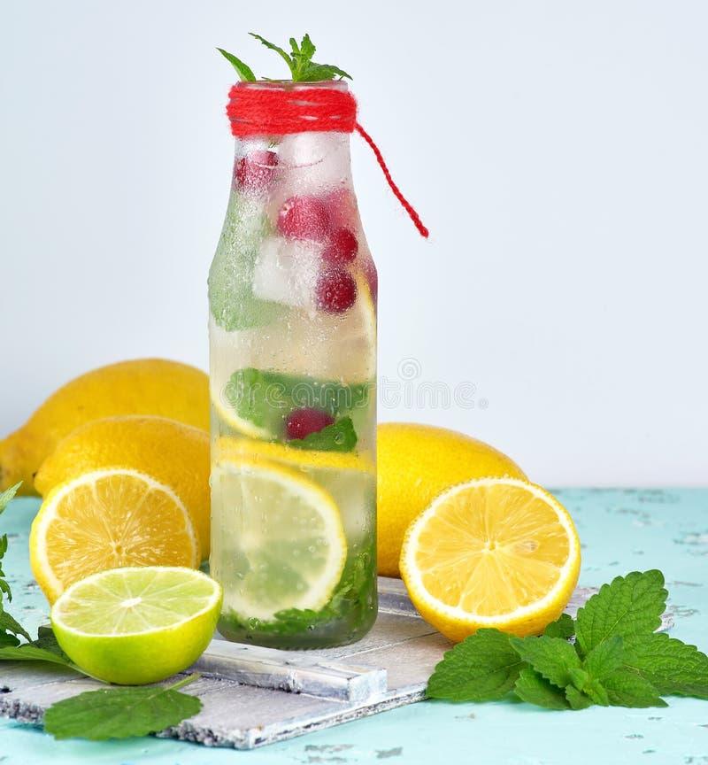 夏天刷新的饮料柠檬水用柠檬,蔓越桔,薄荷叶 免版税库存照片
