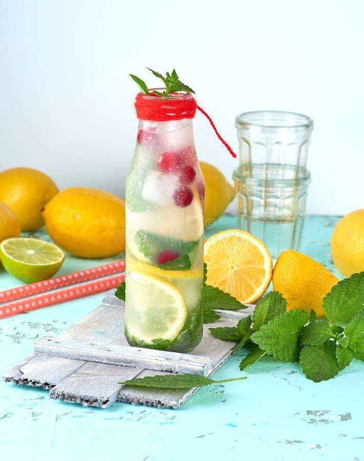 夏天刷新的饮料柠檬水用柠檬,蔓越桔,薄荷叶 库存照片
