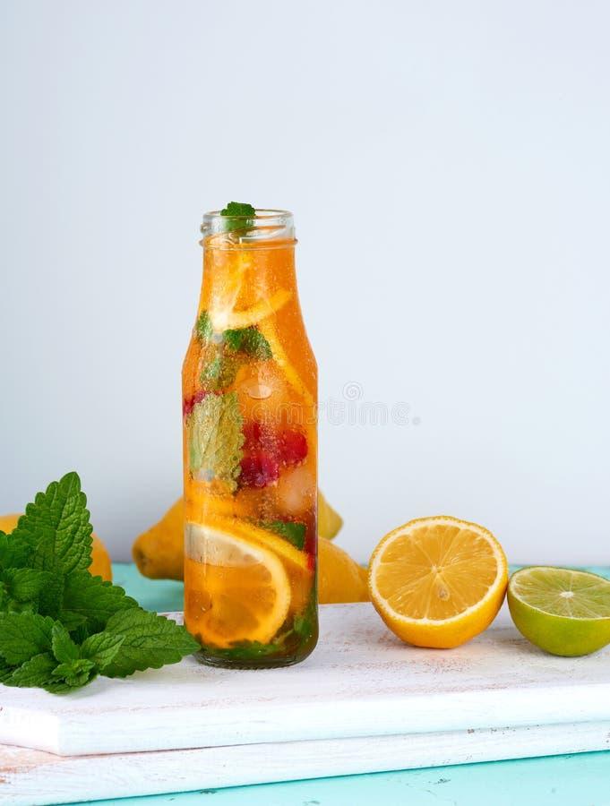 夏天刷新的饮料柠檬水用柠檬,蔓越桔,薄荷叶 免版税库存图片