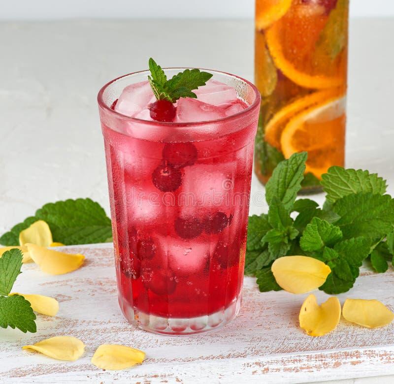 夏天刷新的饮料用冰蔓越桔和片断莓果在玻璃的 免版税图库摄影