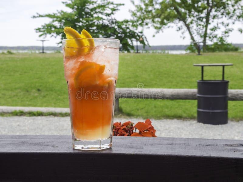 夏天刷新的coctails和美丽的景色 橙色酒精coctail或柠檬水用柠檬和桔子 库存图片