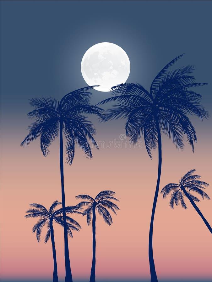 夏天加利福尼亚tumblr背景设置了与棕榈、天空和日落 夏天招贴海报飞行物邀请卡片 夏令时 向量例证