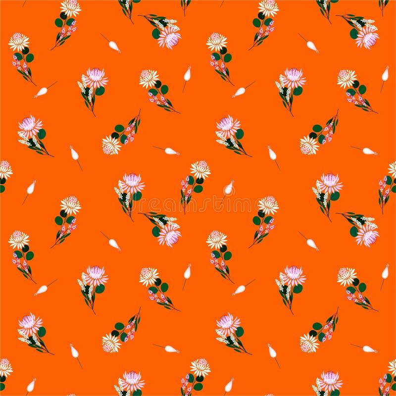 夏天和普罗梯亚木花新自由导航花卉被隔绝的抽象无缝的样式和植物 o 向量例证