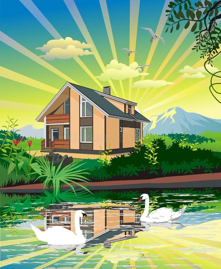 夏天国家风景 由河的之家 在河的天鹅 库存例证