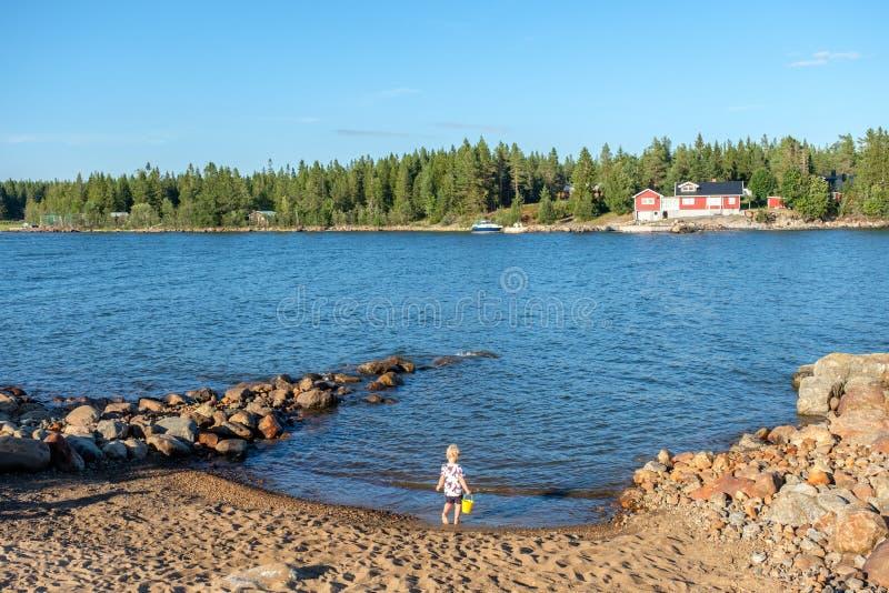 夏天在北瑞典 图库摄影