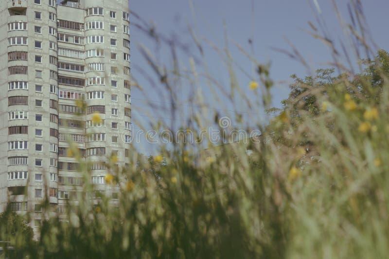 夏天在城市 免版税图库摄影