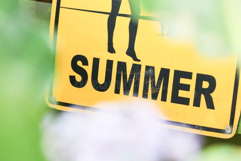 夏天在惠灵顿 免版税库存图片