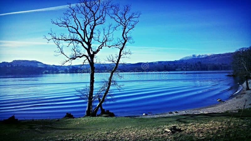 夏天在湖! 免版税图库摄影