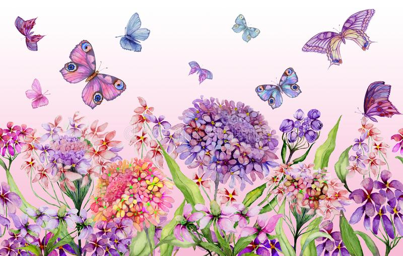 夏天宽横幅 美丽的生动的屈曲花属植物花和五颜六色的蝴蝶在桃红色背景 水平的模板 免版税库存照片
