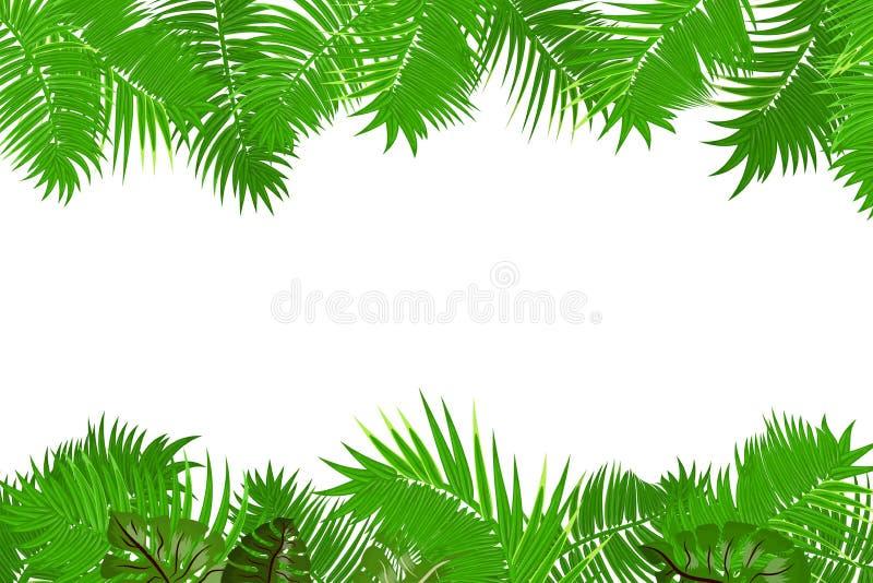 夏天密林棕榈叶框架 皇族释放例证