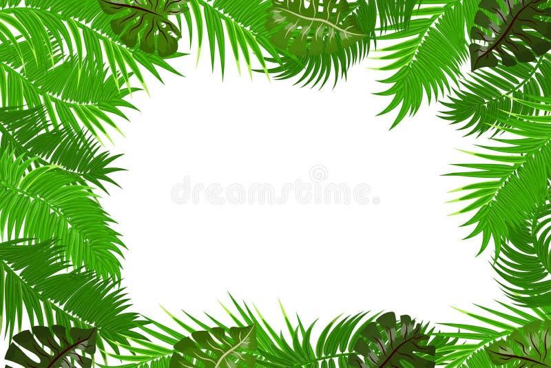 夏天密林棕榈叶框架 向量例证