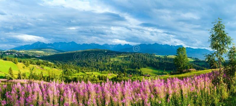 夏天山国家全景(Gliczarow Gorny,波兰) 库存图片