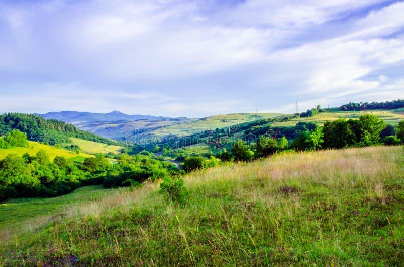 夏天山风景、青山和树在温暖的太阳 免版税库存图片