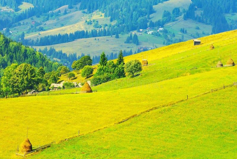 夏天山风景在晴朗的天气的 库存照片