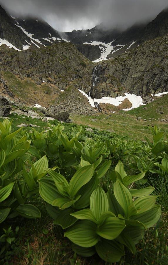 夏天山风景在Transylvanian阿尔卑斯,有风雨如磐的云彩的 图库摄影
