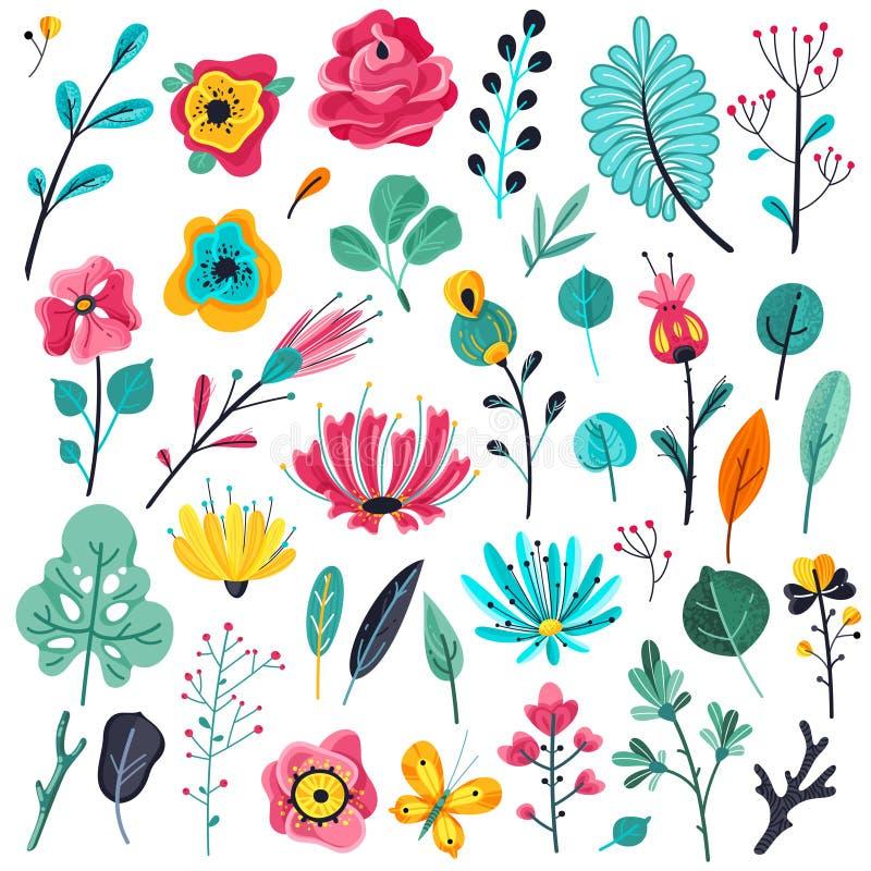 夏天平的花 花卉庭院开花植物,自然花卉元素 春天植物的传染媒介集合 皇族释放例证