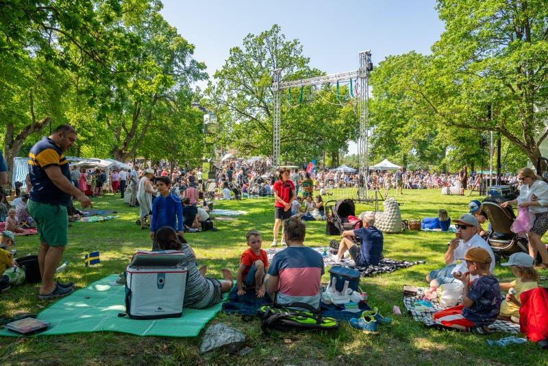 夏天庭院观点的与户外许多人和家庭的小组在有一个绿色的领域野餐在瑞典国庆节 免版税图库摄影