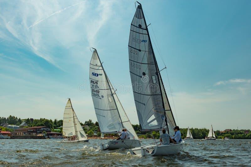 夏天心情:反对蓝天的白色风帆 库存图片
