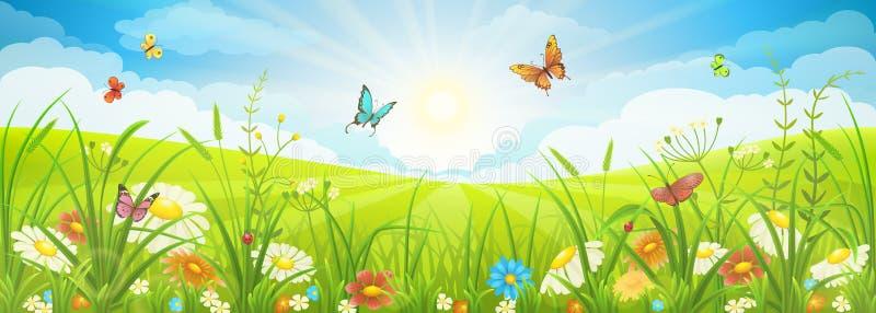 夏天或春天风景 皇族释放例证
