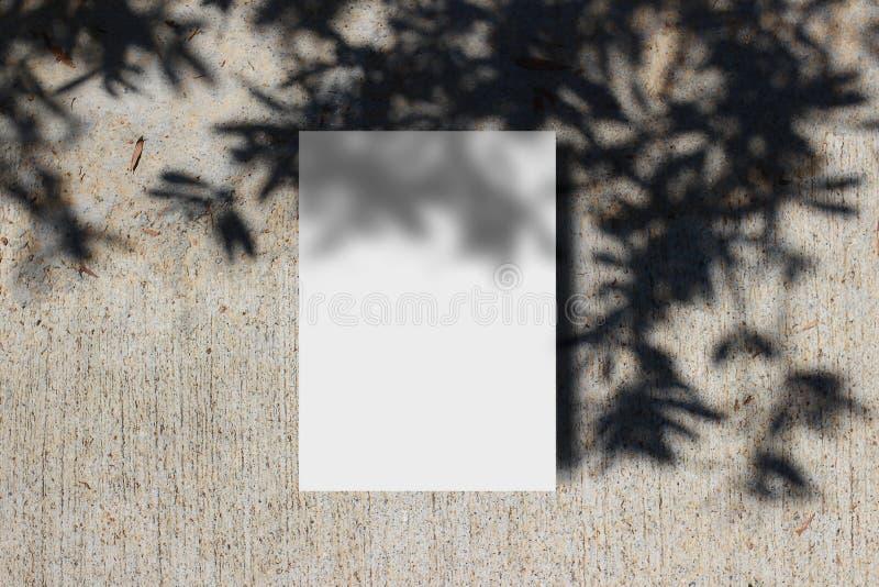 夏天文具大模型场面 与树叶子和分支阴影覆盖物的空白的贺卡 ??grunge 图库摄影