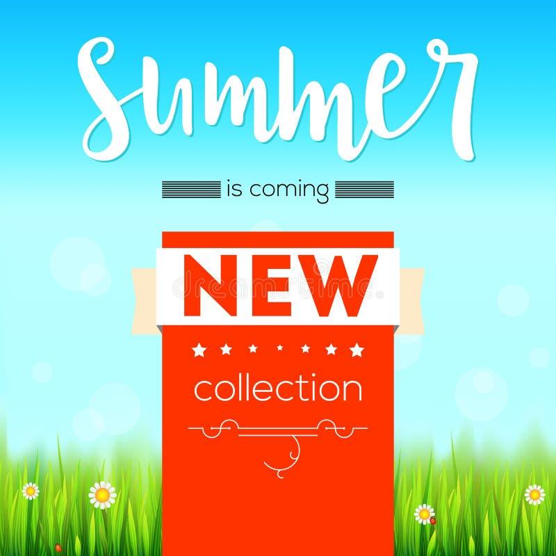夏天新的汇集横幅 葡萄酒样式与图表元素的文本海报,蓝色夏天天空,绿色,豪华的草 向量例证