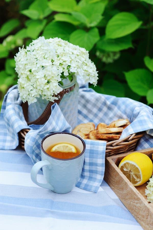 夏天早餐在美丽的开花的庭院里用茶、柠檬和曲奇饼 免版税库存图片
