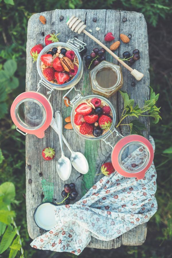 夏天早餐酸奶用莓果和果子在玻璃瓶子 图库摄影