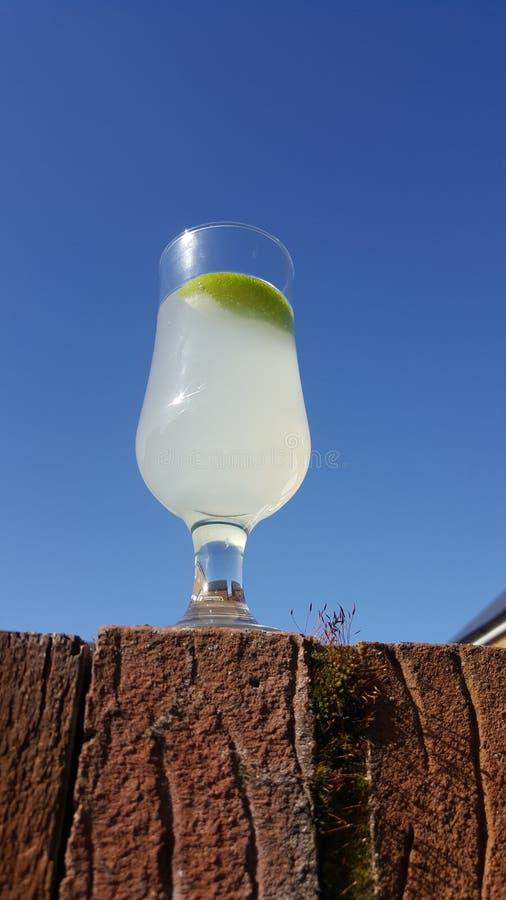 夏天杜松子酒和带苦味柠檬 免版税库存照片