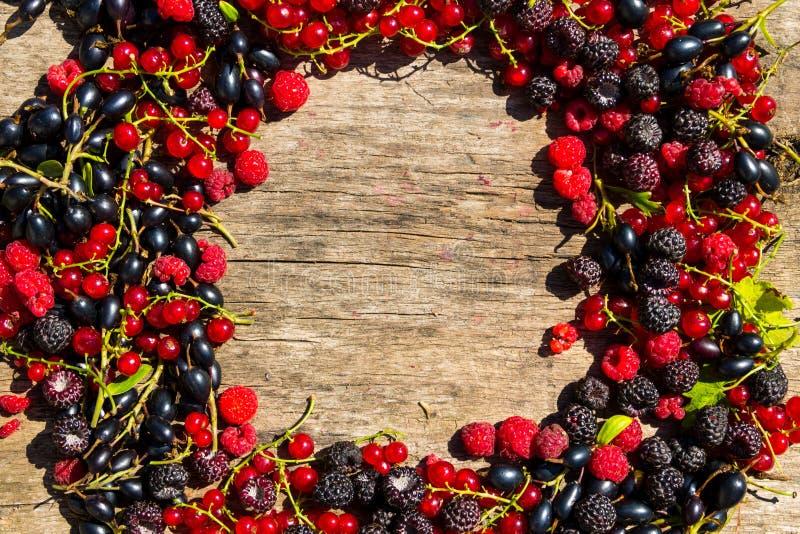 夏天框架用在木背景的新鲜的五颜六色的莓果 免版税库存照片