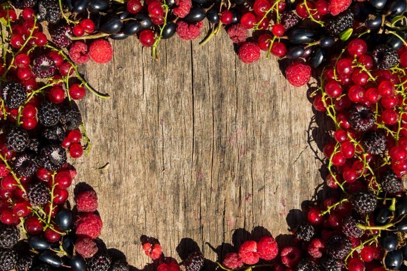 夏天框架用在木背景的新鲜的五颜六色的莓果 库存照片