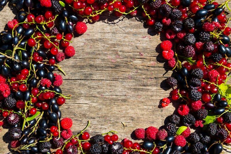 夏天框架用在木背景的新鲜的五颜六色的莓果 免版税库存图片