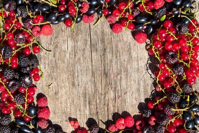 夏天框架用在木背景的新鲜的五颜六色的莓果 图库摄影