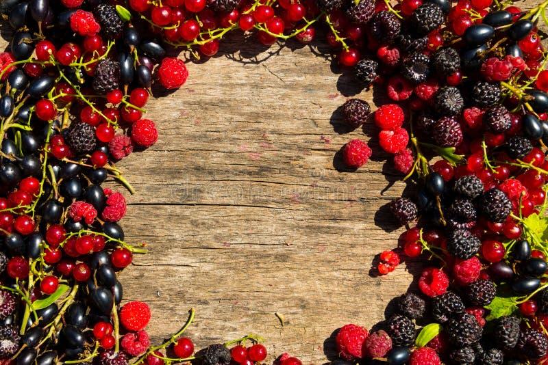 夏天框架用在木背景的新鲜的五颜六色的莓果 免版税图库摄影