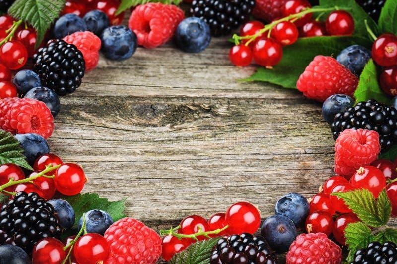 夏天框架用新鲜的五颜六色的莓果 免版税库存图片